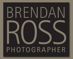 Brendan Ross Photography - Photographer - Detroit, MI