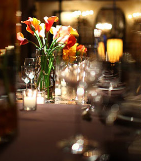 Exquisite Affairs Productions - Event Planner - New York, NY