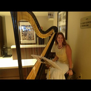 Illinois Harpist | Deb Beyer