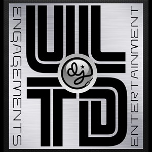 South Windham Bar Mitzvah DJ | Unlimited Engagements Ent.