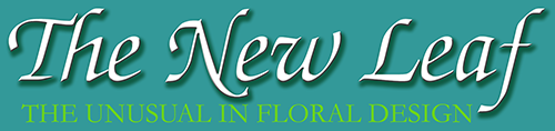 The New Leaf - Florist - Norfolk, VA