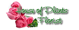 House of Plants Florist - Florist - Akron, OH