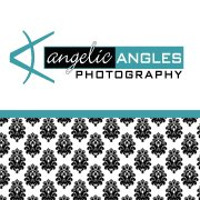 Angelic Angles Photography - Photographer - Madison, WI