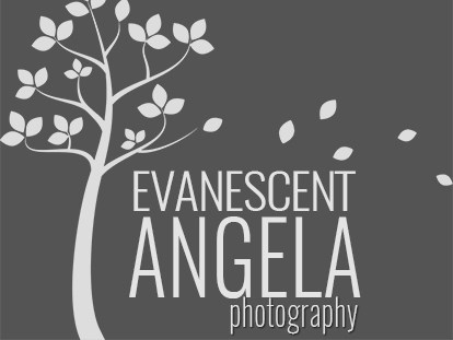 Evanescent Angela Photography - Photographer - Austin, TX