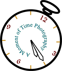 A Moment of Time Photography - Photographer - Reno, NV
