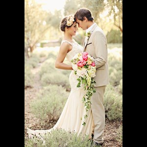 Bedford, TX Wedding Planner | Butterfly Kisses & Wedding Wishes