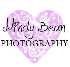Mountain View Wedding Photographer | Mindy Bean Photography