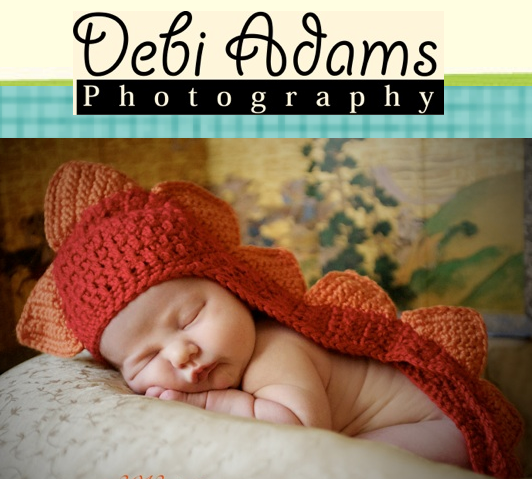 Debi Adams Photography - Photographer - Plano, TX
