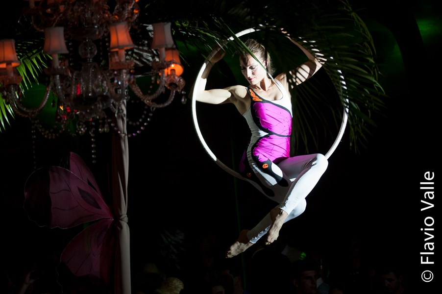 Tampa - Cirque And Circus Events - Circus Performer - Tampa, FL