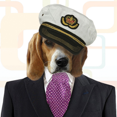 The Regal Beagles Yacht Rock Band - Beach Band - Baltimore, MD