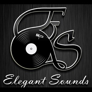 Austin Event DJ | Elegant Sounds