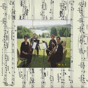 Parkman Chamber Musician | alliance string quartet