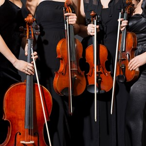 Holcomb String Quartet | Symphony Sounds