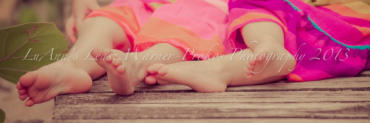Warner-Prokos Photography