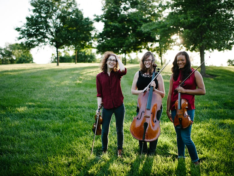 District Strings - String Quartet - Washington, DC