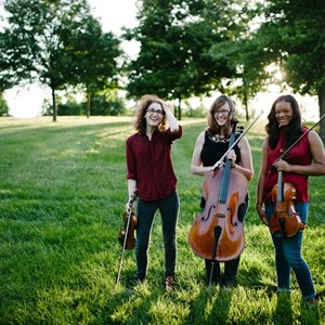 Tall Timbers Chamber Music Trio | District Strings