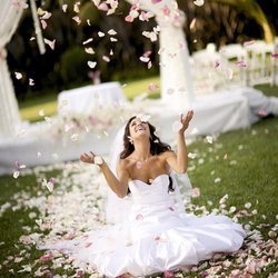 A Beautiful Celebration - Event Planner - Chattanooga, TN