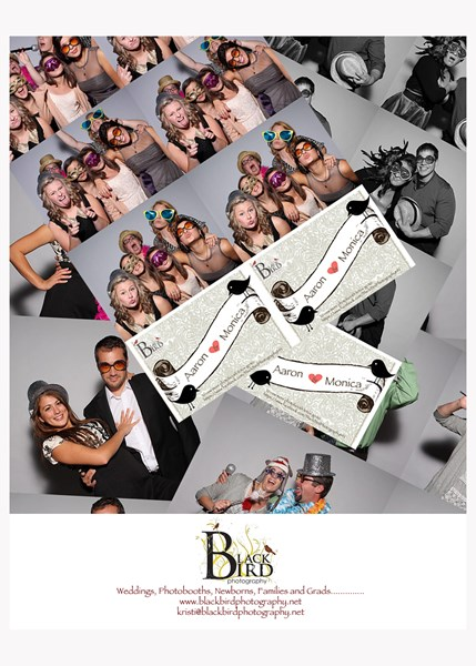 Black Bird Photography Photo Booth - Photographer - Burnsville, MN