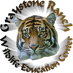 Graystone Ranch's Traveling Petting Zoo - Animal For A Party - Atlanta, GA