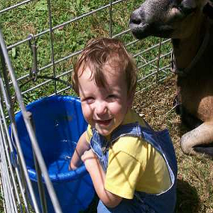 The Barn Yard Traveling Petting Zoo - Animal For A Party - Salem, OH