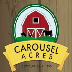 Carousel Acres - Dunk Tank - Detroit, MI