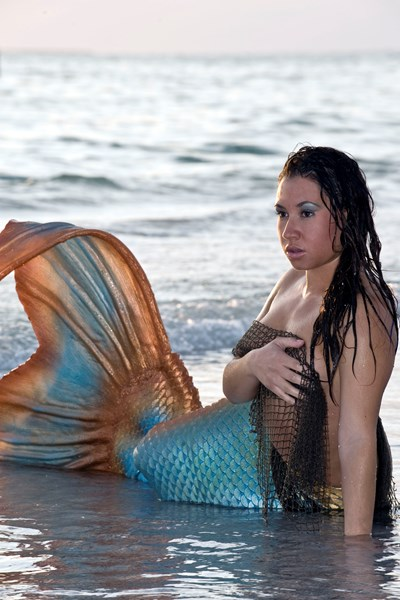 The Florida Mermaid - Costumed Character - Tampa, FL