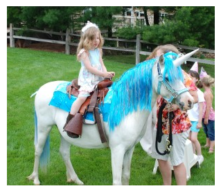 Indianapolis Pony Ride Parties and Petting Zoo - Petting Zoo - Indianapolis, IN