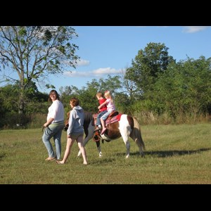 Terre Haute Petting Zoo | Rosies Ponies and Petting Zoo