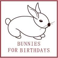 Washington Animal For A Party | Bunnies for Birthdays