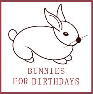 Bunnies for Birthdays - Animal For A Party - Kenmore, WA