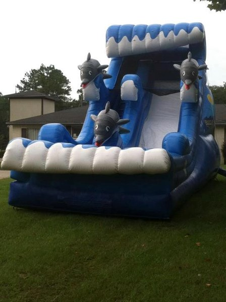 Bouncers of Tallahassee - Bounce House - Tallahassee, FL