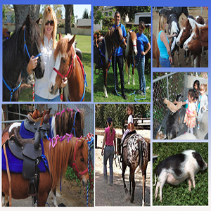 Abby's Party Ponies - Animal For A Party - Long Beach, CA