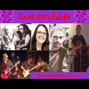 Red Deer Dance Band | Los Orchids