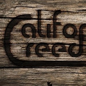 Soulsbyville 70s Band | California Creedence