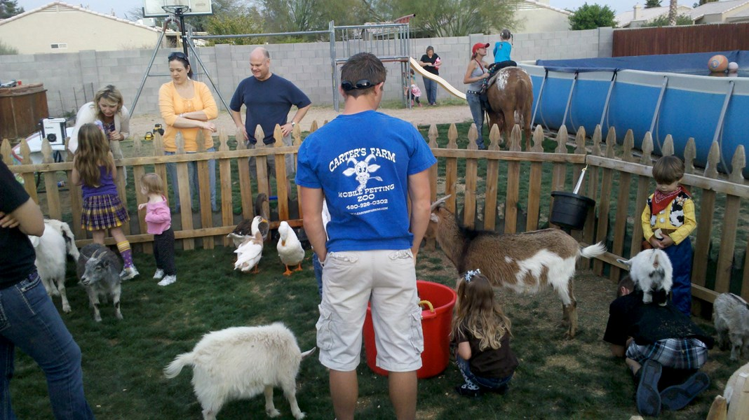Carter's Farm - Petting Zoo - Phoenix, AZ