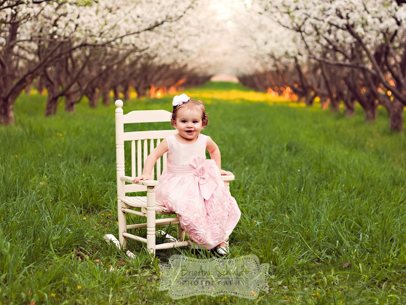 BrieAnn Schmidt Photography - Photographer - Orem, UT