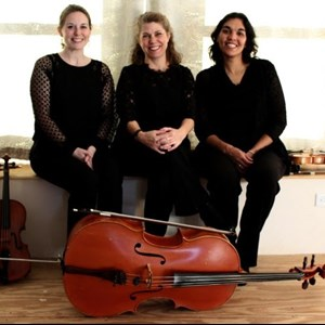 Parsons Chamber Music Quartet | The Bloom Trio