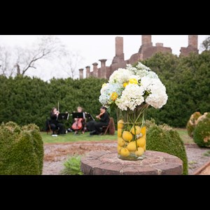 Keene String Quartet | The Bloom Trio