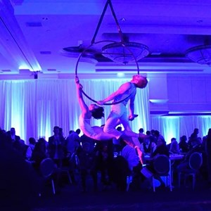 Omaha Ballroom Dancer | St. Louis - Circus, Carnival, & Cirque Events