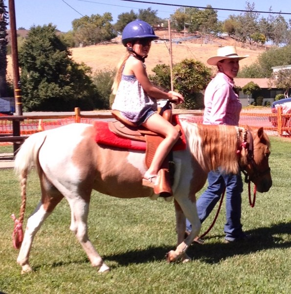 Ponies and Paints - Pony Rides - Santa Ynez, CA