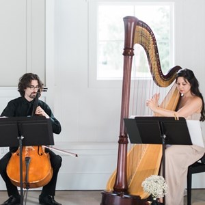 Pasadena, CA Harpist | Lily Press, Harp and Simon Linn-Gerstein, Cello