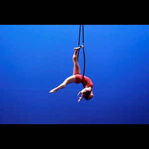 Milwaukee Trapeze Artist | Rosie Bliss