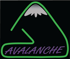 Avalanche Productions - Mobile DJ - Saint Petersburg, FL