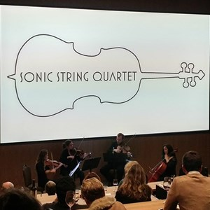 Ledger Chamber Music Duo | Sonic String Quartet