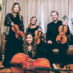 Seattle, WA String Quartet | Sonic String Quartet