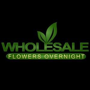 San Diego, CA Florist | Wholesale Flowers Overnight