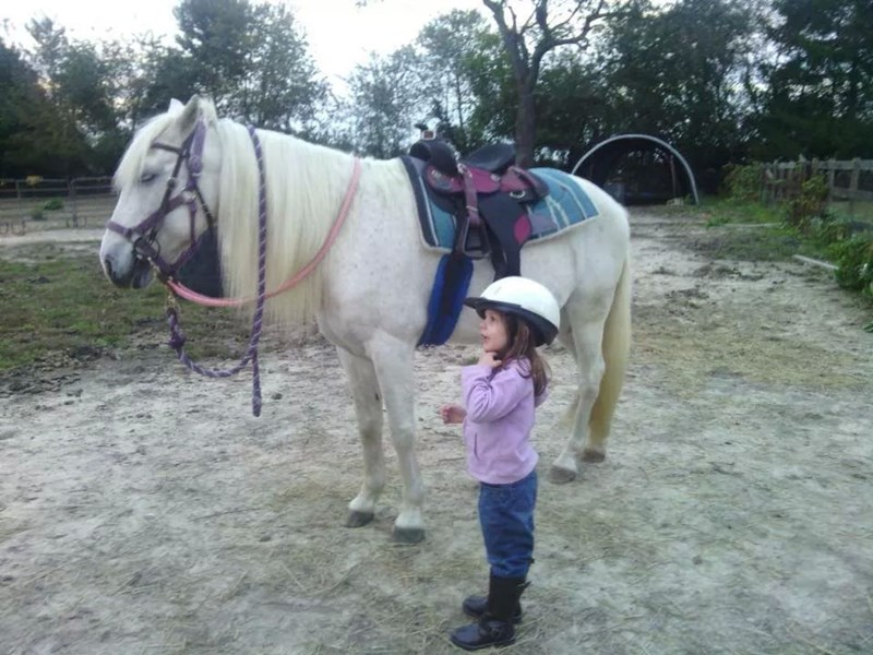 Dusty Boots Farm, LLC - Pony Rides - Dover, DE