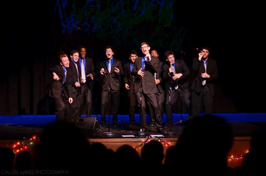 Brandeis VoiceMale - A Cappella Group - Waltham, MA