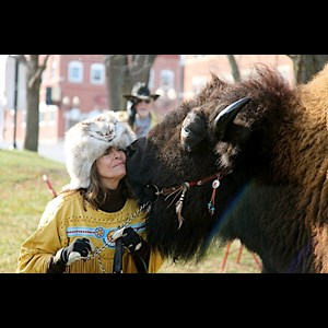 Sioux Center Animal For A Party | BUFFALO * LONGHORN *MINI's*UNICORN photos/parades