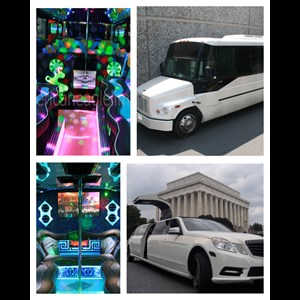 Alexandria Party Bus | American Eagle Limousine and Party Bus